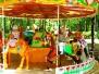 День защиты детей-2013. Парк им. П.М.Зернова. Фото М.Хорошкина