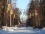 Разноцветная Масленица в парке им. Зернова 10 марта 2019г